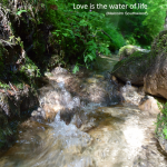 012 Love is the water